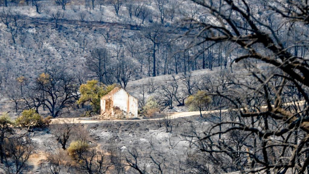 Überreste und Trümmer eines Wohnhauses auf der verbrannten Fläche in Sierra Bermeja, Estepona. Ein Feuerwehrmann ist bei der Bekämpfung des Waldbrandes im südspanischen Andalusien an der Costa del Sol ums Leben gekommen.