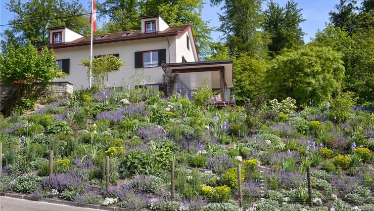 Wo endet der Garten, wo beginnt der Wald? Neu gestaltete Gartenlandschaft auf der Allmend. zvg