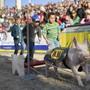 Abstand halten ist an der Olma in St. Gallen nicht möglich. Die Verantwortlichen haben die Messe für 2020 abgesagt. Auch das legendäre Säuli-Rennen wird nicht stattfinden. (Archivbild)