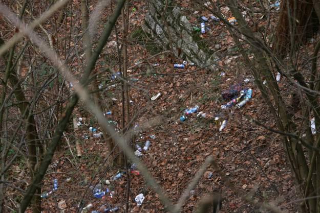 Auffällig viele Bierdosen gehören zum Müll