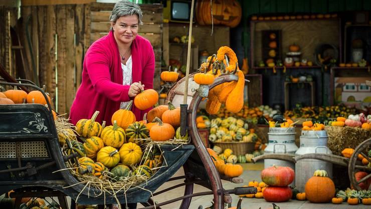 Seit 16 Jahren verkaufen Susi Gebhard und ihr Mann ihre Kürbisse im Zelt am Strassenrand in Wildegg.