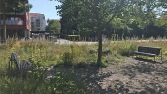 Am Girardplatz laden diese Bänkli zu einer kurzen Rast ein.