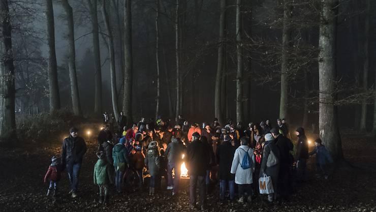 Wegen der langen Trockenheit herrscht teils erhebliche Waldbrandgefahr - die Behörden von Basel-Stadt und Baselland warnen vor Feuern an Waldweihnachtsfeiern. (Symbolbild)