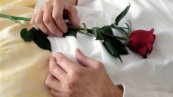 In den meisten Spitälern wird palliative Pflege angeboten, nicht aber Sterbehilfe durch eine externe Organisation.