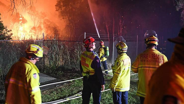 Feuerwehrleute bekämpfen Brände am Stadtrand von Sydney.