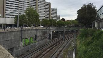 Mit der Überdachung der Gleisschneise zwischen Bahnhof Wiedikon und Hohlstrasse, soll eine Parkanlage entstehen.