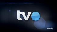 TVO-Wahldebatte