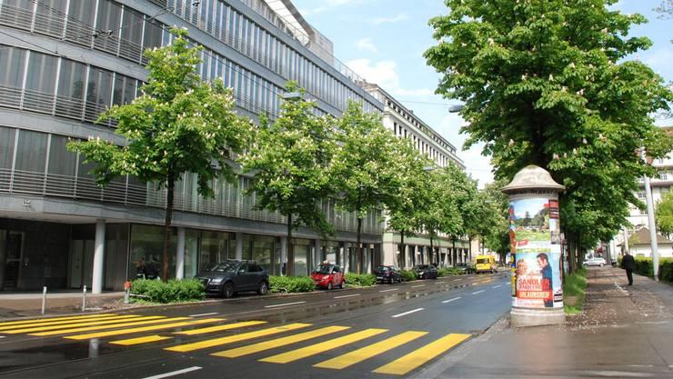 Zürich, das ist nicht nur Betonwüste. Eine Aktionskampagne soll nun dafür sorgen, dass in der Stadt auch weiterhin genug Grün gedeiht.