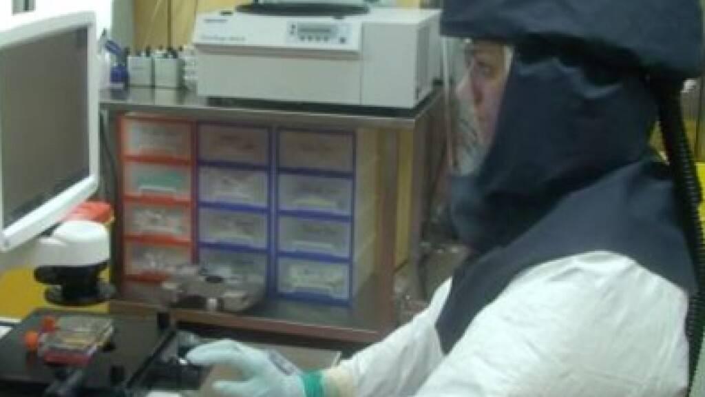 Forscherteam mit Berner Beteiligung hilft, Mutanten zu enträtseln