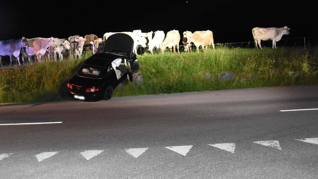 Wie lange die Kühe geblendet wurden, ist unklar.