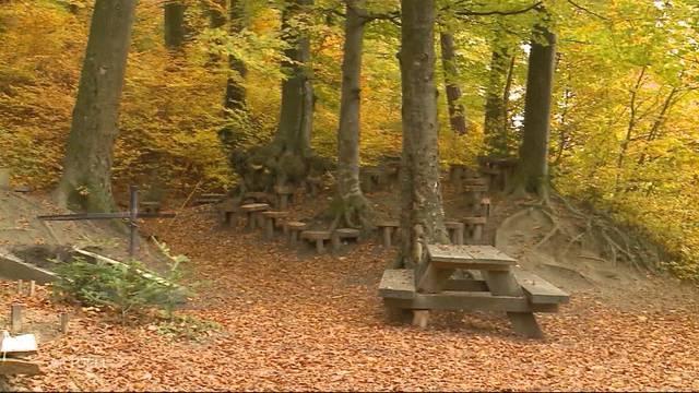 Flügerli-Spielplatz im Aargau soll verschwinden