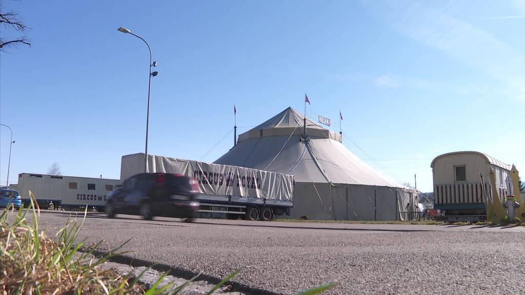 Schuldspruch: Ex-Circus Royal Direktor muss ins Gefängnis