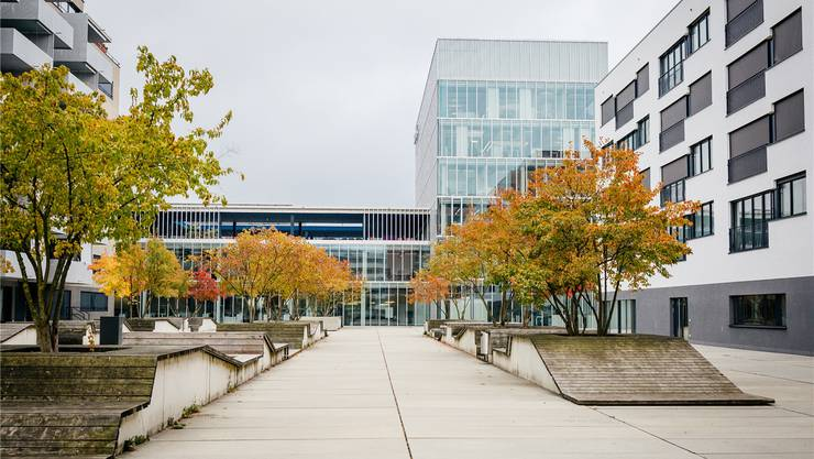 Laut Meyer ein gutes Beispiel für Gestaltung des öffentlichen Raums: Innenhof an der Rütistrasse. Sandra Ardizzone