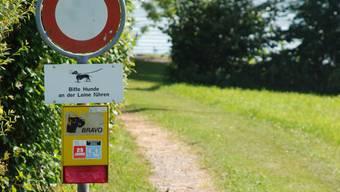 Das Verbot kann teuer werden: Bis zu 150 Franken kann die Busse für einen frei laufenden Hund am Hallwilersee kosten.