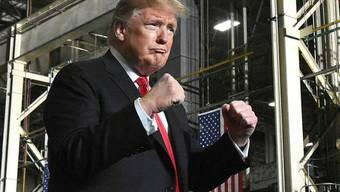 US-Präsident Donald Trump hat in der Nacht auf Donnerstag erneut die vollständige Bekämpfung der Terrormiliz IS proklamiert.