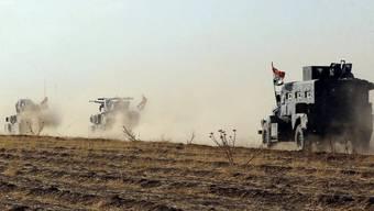 In Kirkuk kommt es zu militärischen Spannungen zwischen Iraks Armee und kurdischen Peschmerga-Kämpfern. Die ölreiche Provinz wird sowohl von der irakischen Zentralregierung als auch von den Kurden beansprucht (Archiv).