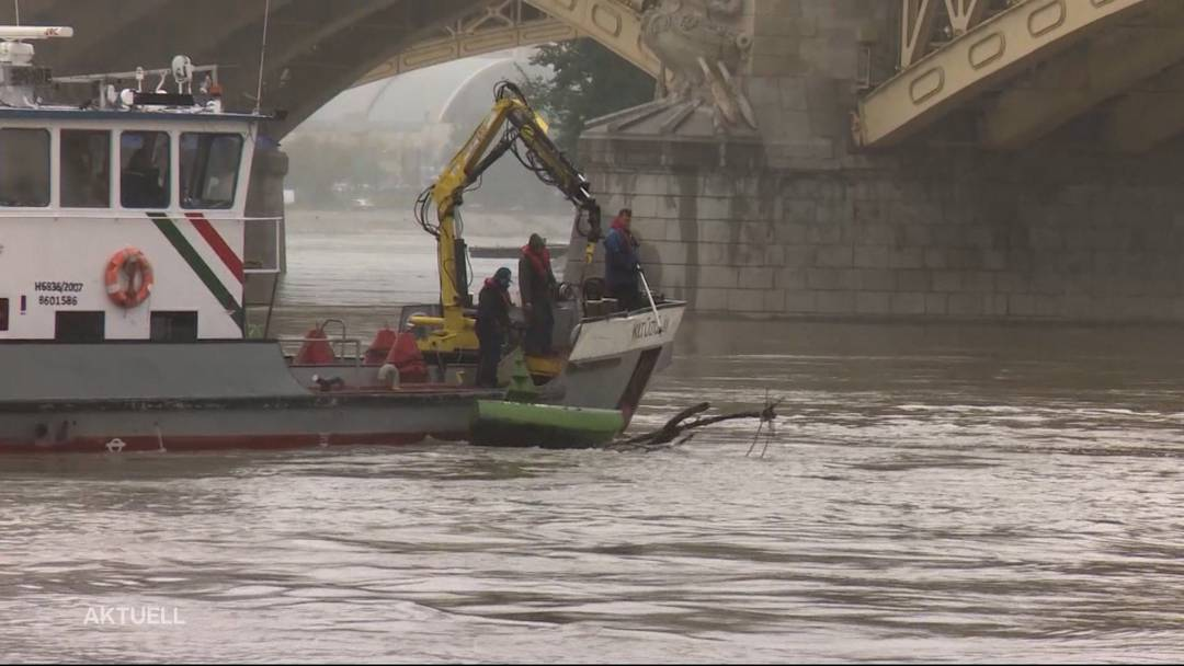 Donau-Drama: Mindestens 7 Tote nach Schiffskollision