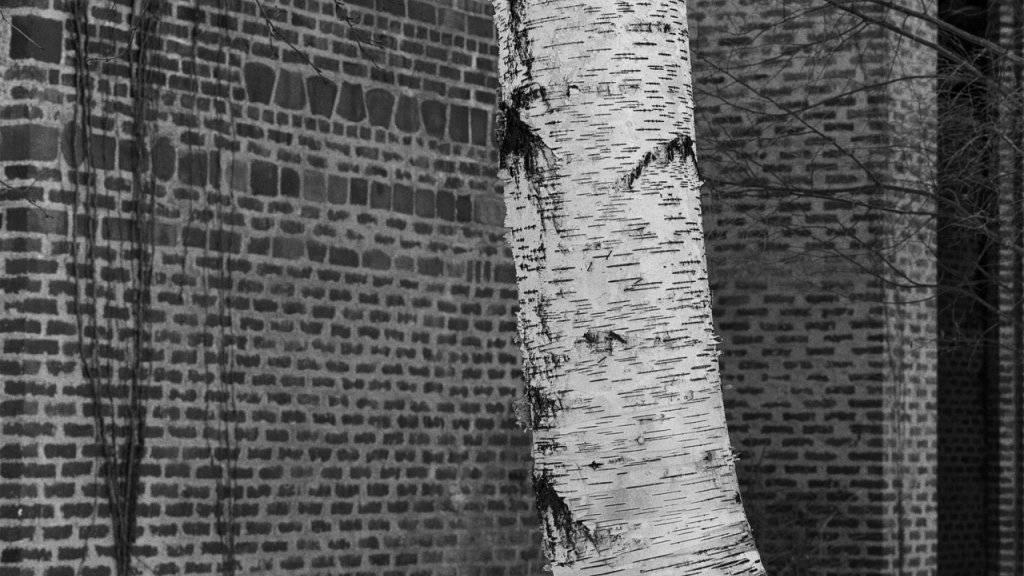 Hélène Binet. Sigurd Lewerentz. Markuskirche, Björkhagen (Schweden), 1989