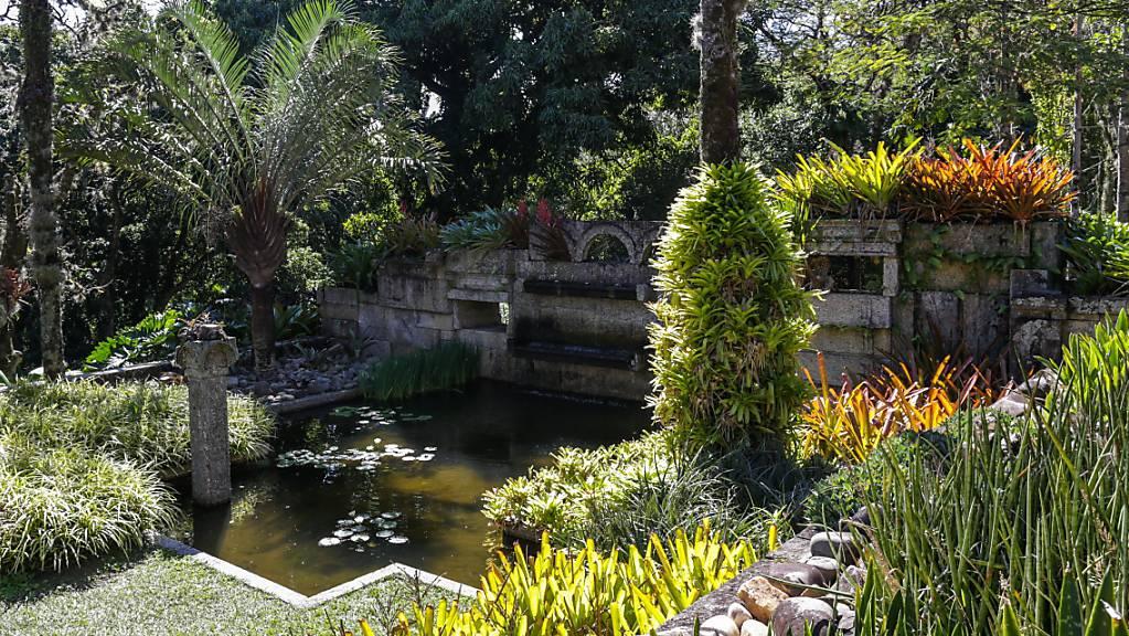 Der botanische Garten in Rio de Janeiro gehört zum Weltnaturerbe. Er beherbergt eine der weltweit grössten Sammlungen von tropischen und subtropischen Pflanzen. (Archivbild)