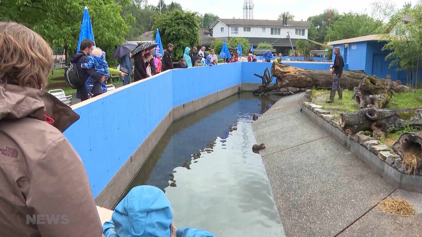 Zoo Kino Programm
