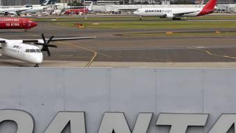 Qantas soll wieder fliegen - hier in Sidney (Archiv)