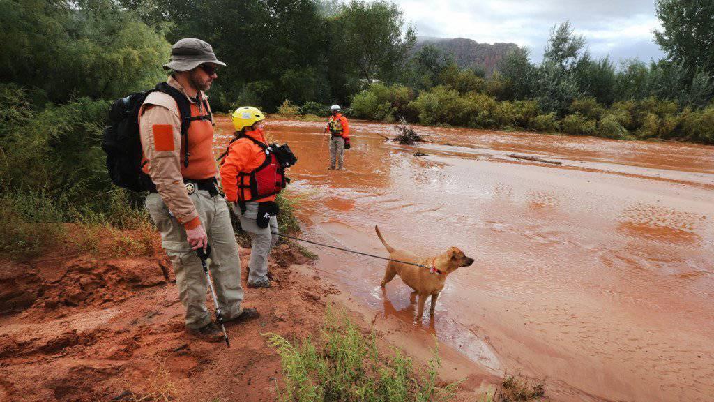 Mit Hunden suchen Helfer im US-Bundesstaat Utah nach Opfern der Überschwemmungen.
