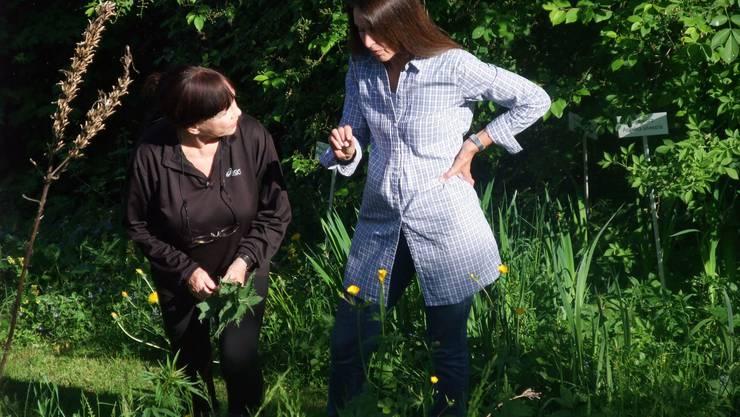 Elisabeth Bollier und Monika Ilg tauschen sich aus