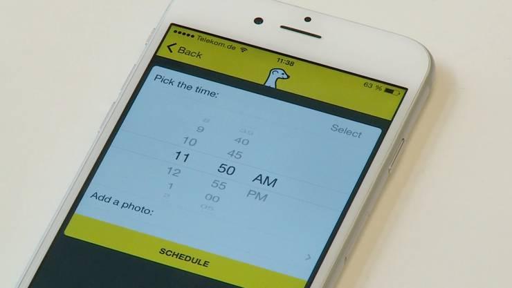 «Meerkat», die App mit dem Erdmännchen.