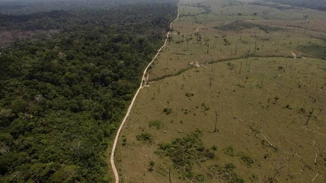 In letzter Zeit ist im brasilianischen Regenwald wieder vermehrt gerodet worden (Archiv)