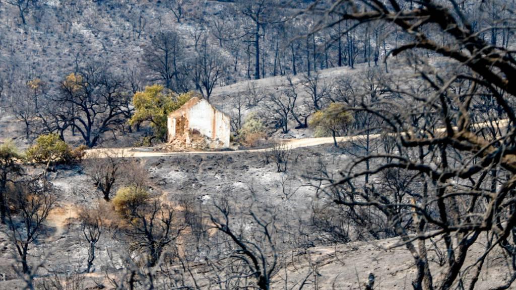 Überreste und Trümmer eines Wohnhauses auf der verbrannten Fläche in Sierra Bermeja, Estepona. Ein Feuerwehrmann ist bei der Bekämpfung des Waldbrandes im südspanischen Andalusien an der Costa del Sol ums Leben gekommen. Foto: Europa Press/EUROPA PRESS/dpa