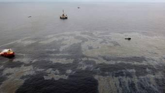 Oelkatastrophe vor der Küste Brasiliens