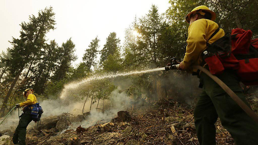 Feuerbekämpfung im US-Bundesstaat Washington