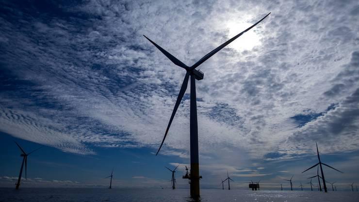 Die Risiken im neuen Energiemarkt haben sich erhöht – ein Offshore-Windpark in der Ostsee.