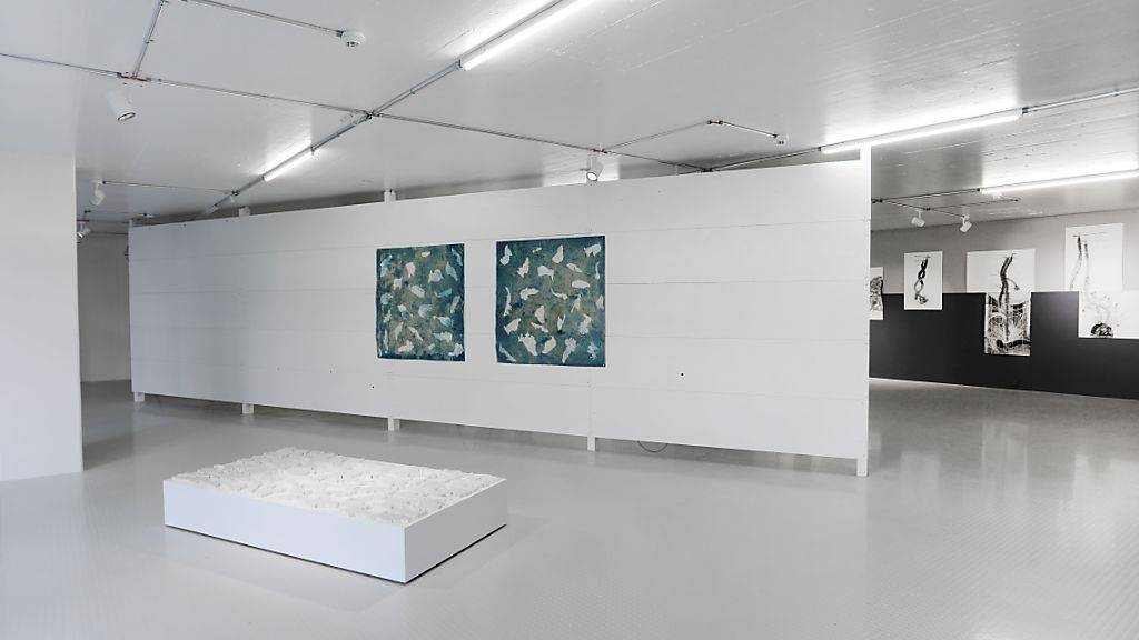Die Ausstellungsräume der Kulturstiftung Basel H. Geiger an der Spitalstrasse in Basel wurden von den Architekten Christ & Gantenbein umgebaut.