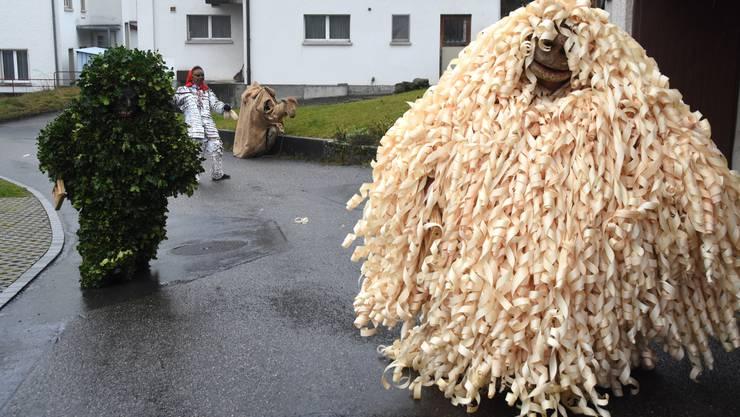 Bärzeli gehen durchs Dorf
