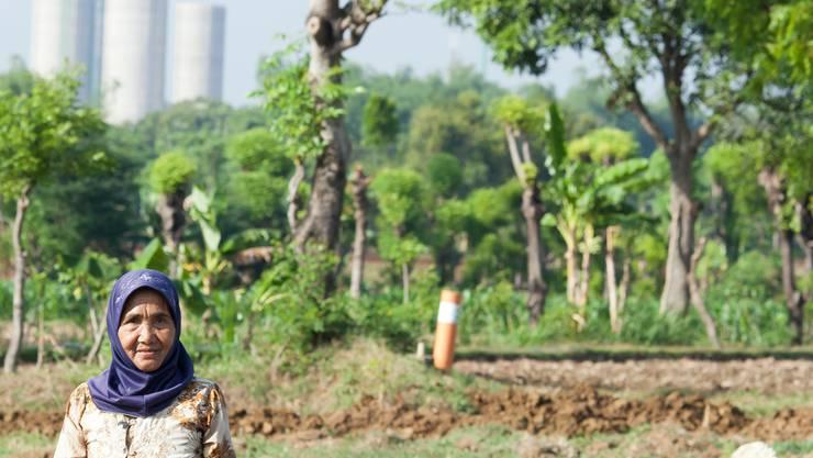 Gegensätze: Bäuerin vor dem Holcim-Werk bei Tuban. Soegiarto Soejatono