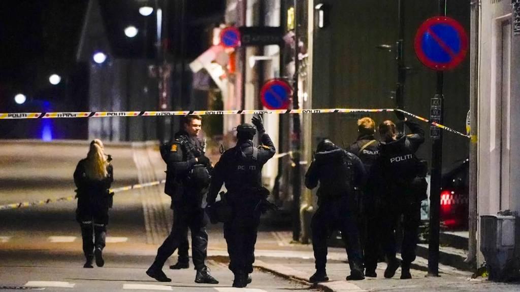 Fünf Tote nach Attacken mit Pfeil und Bogen in Norwegen