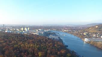 Drohnenaufnahme Hardwald Birsfelden Herbst 2018 Schweizerhalle Rhein Hafen Auhafen Muttenz