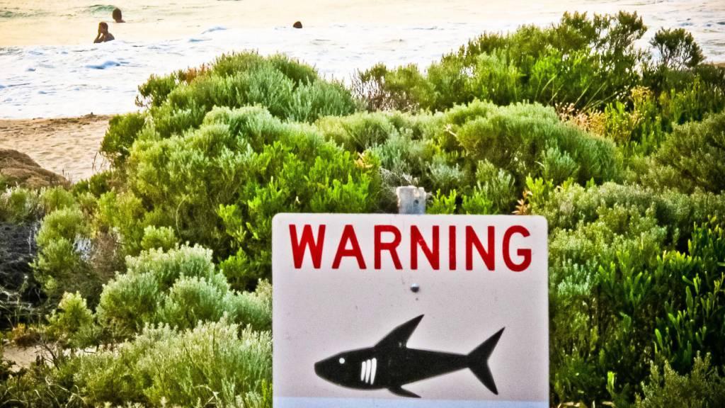 ARCHIV - Ein Schild mit der Aufschrift «Warning shark sighting» (dt. Achtung Hai gesichtet) ist in der Nähe von Prevelly Beach aufgestellt. Foto: Rebecca Le May/AAP/dpa