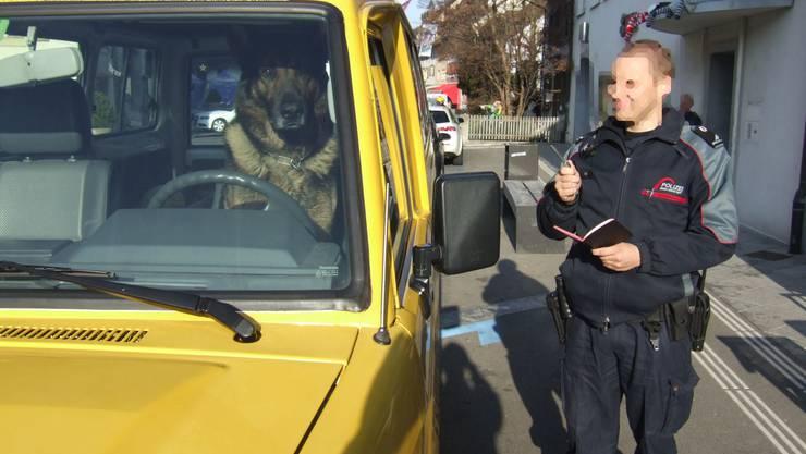 Der Hund am Steuer dieses Autos war nicht auskunftsfreudig