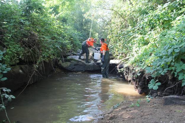 Im Bachunterlauf sind nur noch wenige Wasserpfützen zu finden.