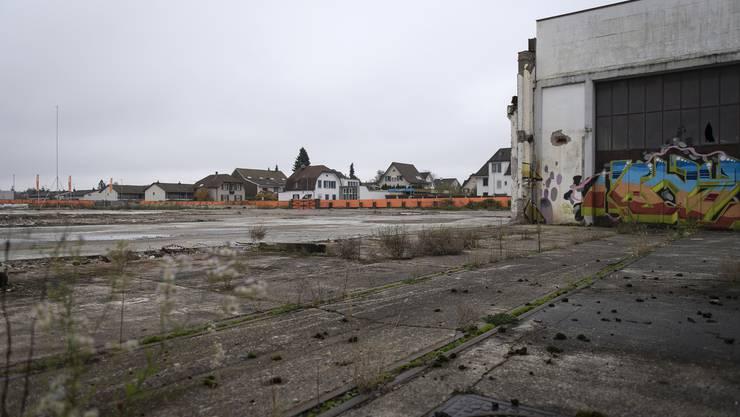 Am 24. November entscheidet sich an der Urne, ob hier dereinst ein Stadion und vier Hochhäuser gebaut werden könnten.