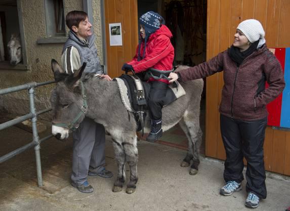 Nico sitzt schon wie ein gestandener Reiter auf dem Esel.