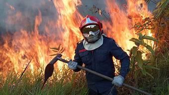 Ein Feuerwehrmann kämpft im Amazonasgebiet gegen die Flammen.