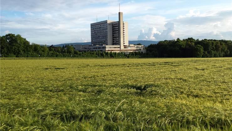Die Bruderholzspital-Initiative wird vom Landrat abgelehnt.