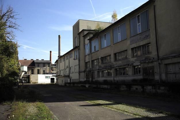"""Besichtigung der leerstehenden ehemaligen Papierfabrik in Zwingen mit Künstlern im Rahmen des Projekts """"Living Memory"""". (20.10.2014)"""