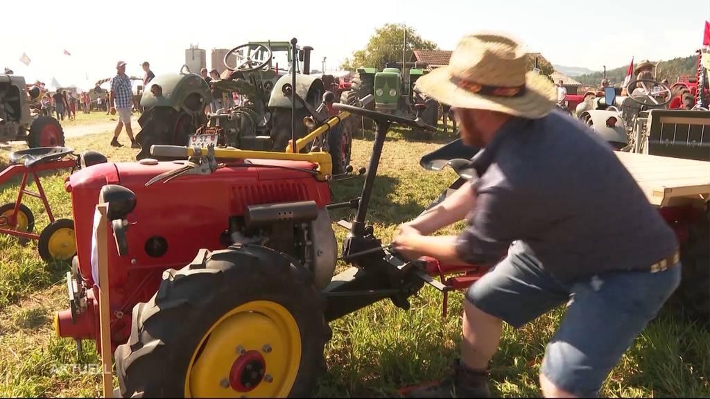 Raritäten: Rund 700 Landmaschinen locken an das Oldtimer-Traktortreffen in Möriken