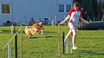 Border Collie Clay springt für Keelya McMahon über (fast) jedes Hindernis.