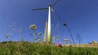 Cornelius Andreaus will trotz geklauter Unterschriften nicht aufgeben und lanciert die Windkraft-Initiative nochmals. (Symbolbild)