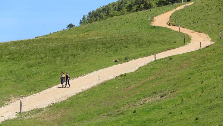 Die Wanderwege auf den Weissenstein wurden am Pfingstwochenende rege genutzt.